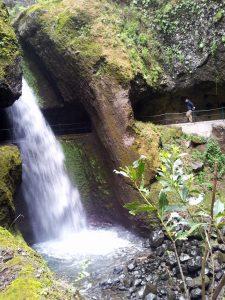 """Die """"Levada Moinho"""", und damit auch der Wanderweg, verlaufen hier direkt hinter einem spektakulären Wasserfall. Eine Regenjacke ist oft Pflicht."""