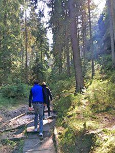 01_sächsische_schweiz_elbsandsteingebirge_wandern_schrammsteine
