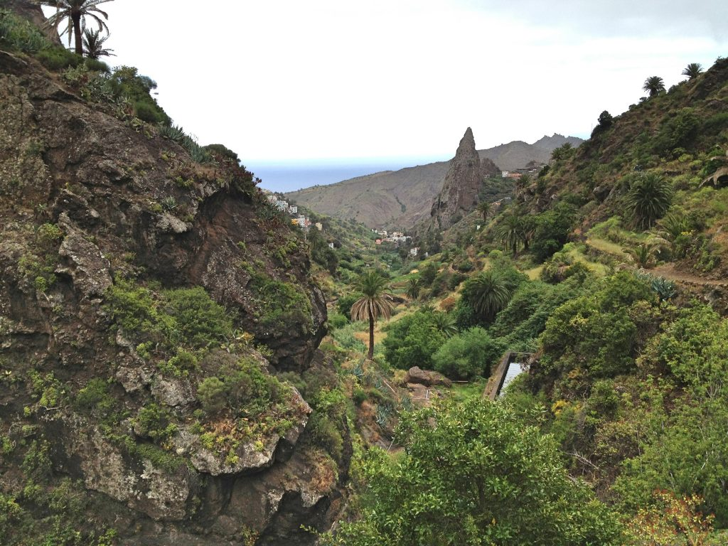 16-yourdailymilk-la-gomera-Bosque-del-Cedro-Hermigua-felspyramide