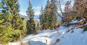 yourdailymilk-notkarspitze-ziegelspitz-unterammergau (3)