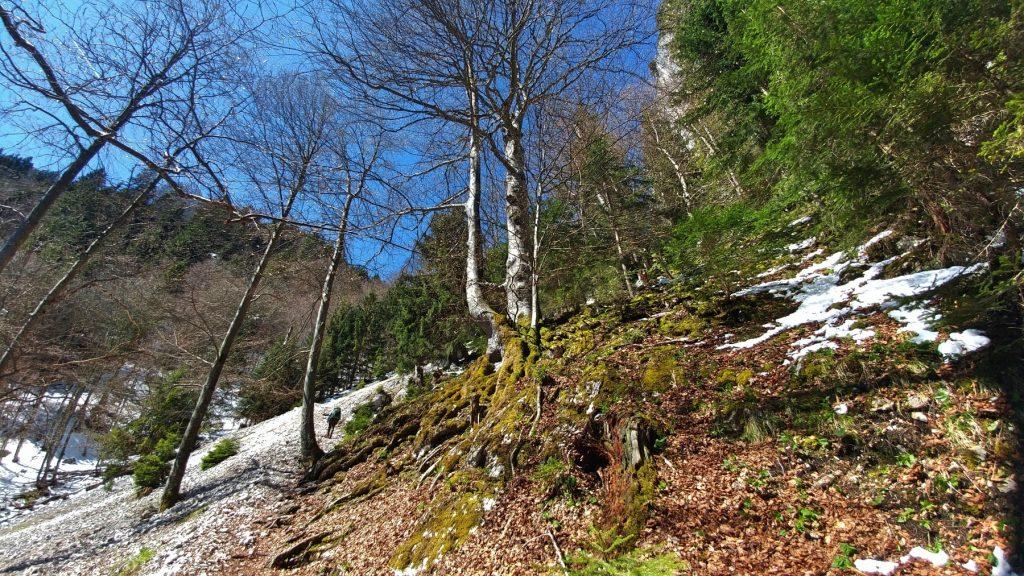 yourdailymilk-kofel-bergtour-wandern-ammergau (1)